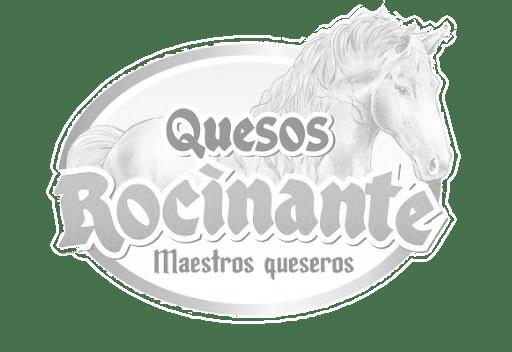 rocinante logo